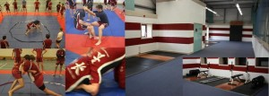 Wrestling and Performance Centre